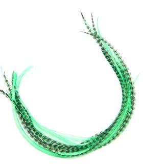Vert aquatique
