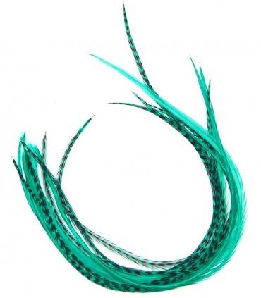Vert velours