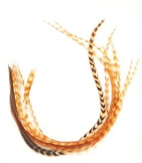 Plume pour cheveux - Apache naturel