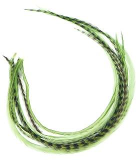 Plume pour cheveux - Olive