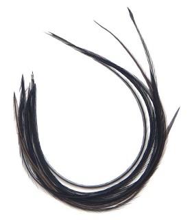 Plume pour cheveux - Noir