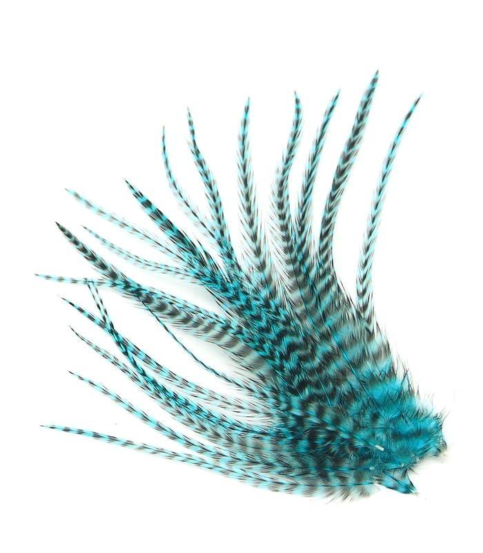 Bleu électrique - plumes courtes à fixer dans les cheveux