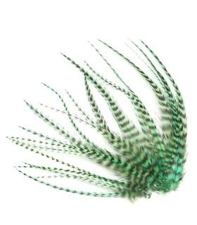 Plume courte pour cheveux - Vert aquatique