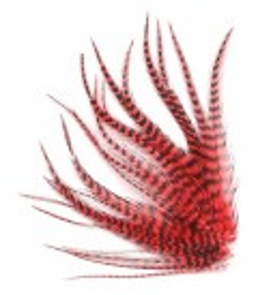 Plume courte pour cheveux - Rouge pur