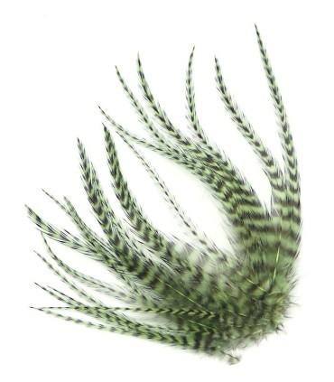 Plume courte pour cheveux - Olive