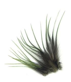 Olive - plumes courtes à fixer dans les cheveux