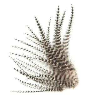 Plume courte pour cheveux - Noir & blanc naturel